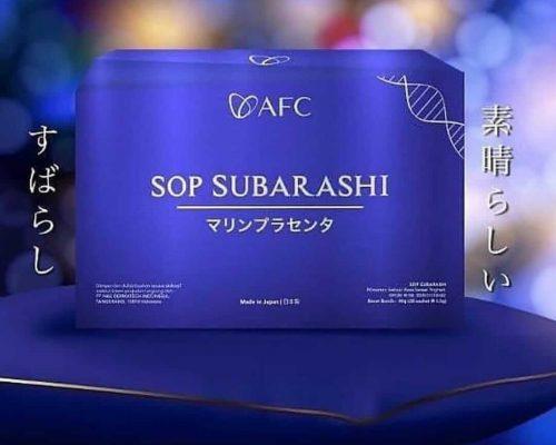 sop-subarashi-img-01